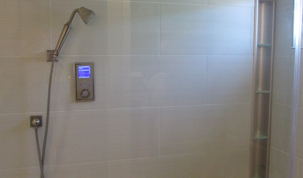 Castro Valley Modern Shower